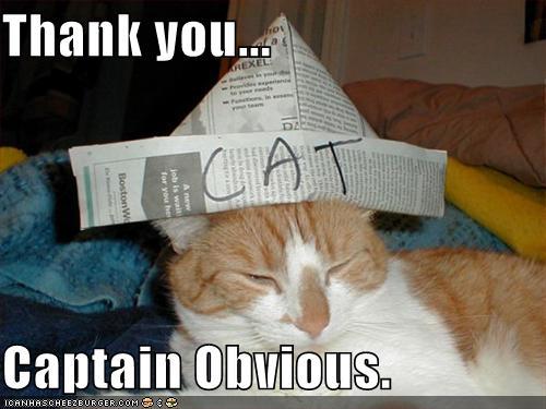 thx-captain-obvious