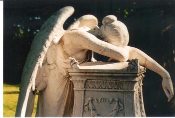 weeping-angel